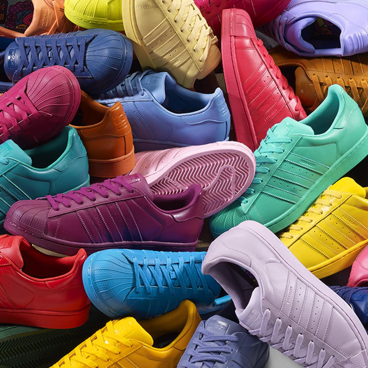 Superstar Adidas Colores